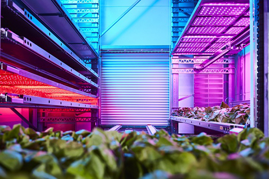 Ono Exponential Farming agrobotica